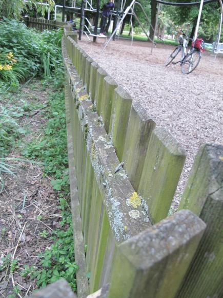 Barrière en bois au Parc Mon Repos